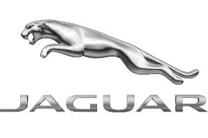 india-Jaguar-Brand-logo
